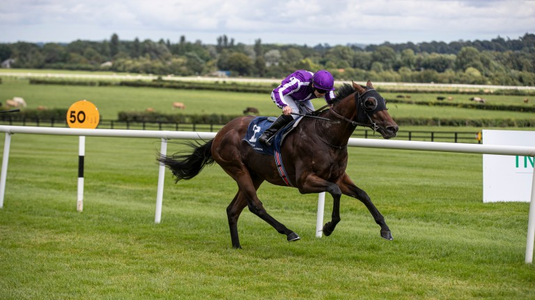 Giorgio Vasari: Naas winner has been supplemented for Sunday's Group 1 highlight at the Curragh