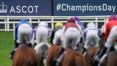 ASCOT, ENGLAND - OCTOBER 19: A general view as runners turn into the back straight during the QIPCO British Champions Day at Ascot Racecourse on October 19, 2019 in Ascot, England. (Photo by Alan Crowhurst/Getty Images)