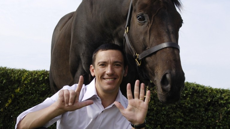 Stetchworth near Newmarket 14.9.06 Picture:Edward WhitakerFujiyama Crest the horse that provided Dettori with the final leg of his magnificent seven at Ascot 10 years ago with his former jockey now owner at their home near Newmarket