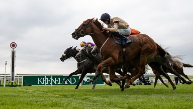 Glen Shiel (front): victorious in the Phoenix Sprint Stakes on Sunday