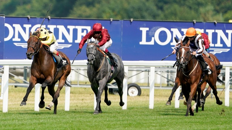Maddy Playle thinks she saw a future winner at Ascot on Saturday