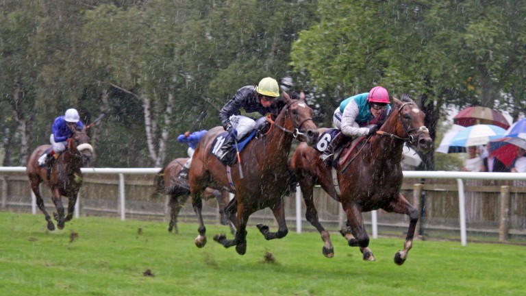FRANKEL wins The EBF Maiden Stakes Newmarket 13Aug10
