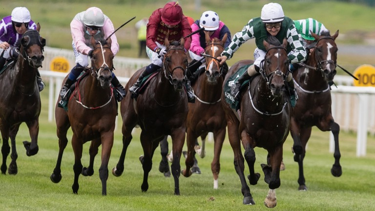 The Lir Jet (maroon) was promoted to second over Aloha Star (pink) following a stewards' inquiry to the Keeneland Phoenix Stakes