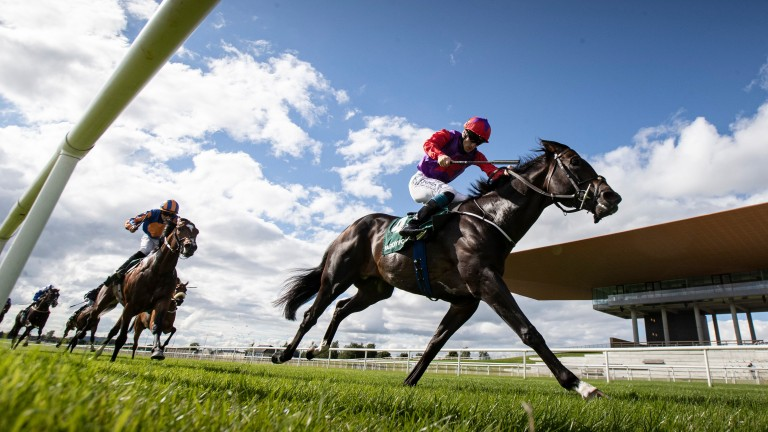 Romanised: produced a cracking performance on his return in the Paddy Power Minstrel Stakes at the Curragh