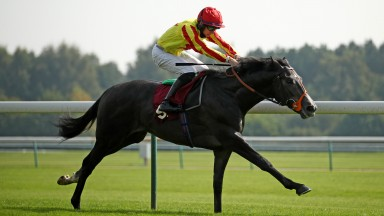River Alwen on his way to recording a comfortable success at Haydock