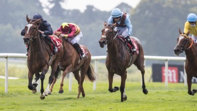 Laburnum (left) comes out best in the feature Hurry Harriet Stakes at Gowran
