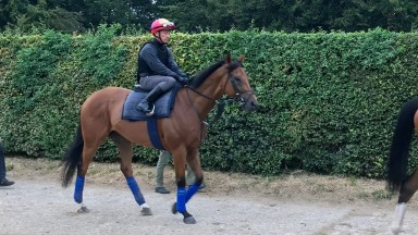 Lord North and Frankie Dettori head to the Al Bahathri on Thursday morning