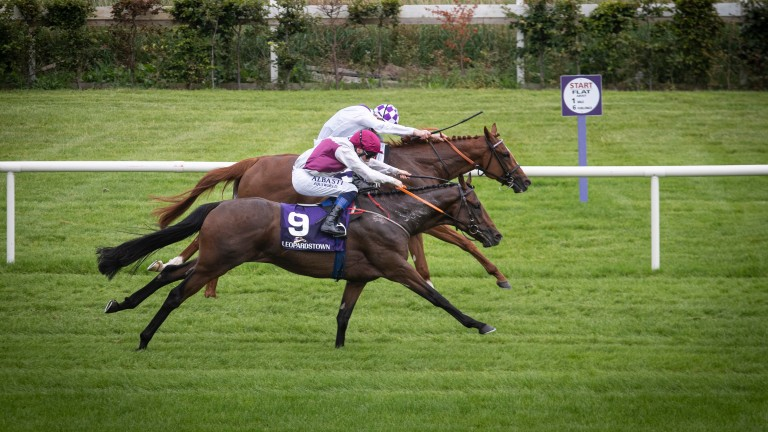 300-1 shot He Knows No Fear ridden by Chris Hayes wins the mile maiden at Leopardstown