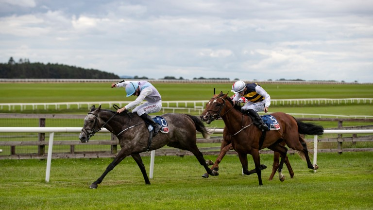 Mirann (white cap, second): out to go one better after his second in the Sky Bet Ebor Trial