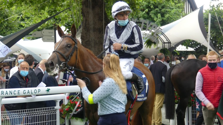 Alpine Star again showed class and courage to be second in the Prix Jacques le Marois at Deauville under Stephane Pasquier