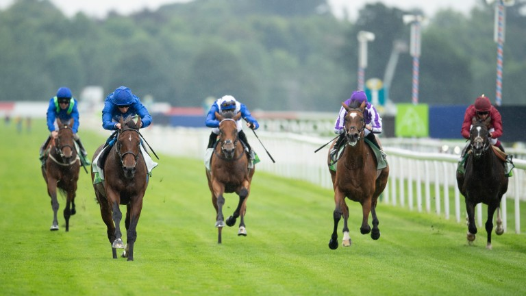 No contest: Ghaiyyath (second from left) beats Magical, Kameko, Lord North and Rose Of Kildare at York