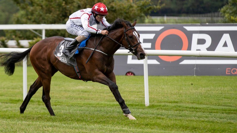 Cadillac: hugely impressive when winning by nine lengths on his Leopardstown debut