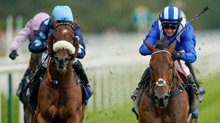 Que Amoro (left) made Battaash (right) work hard for victory in the Nunthorpe