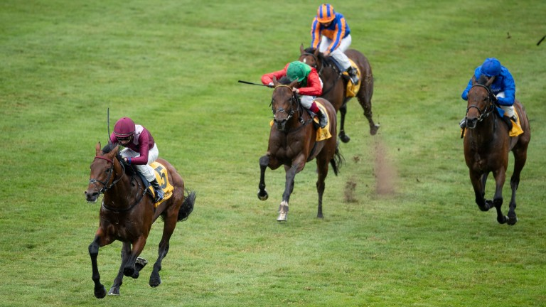 Mishriff (left): star colt could present stern opposition to St Mark's Basilica in the Coral-Eclipse