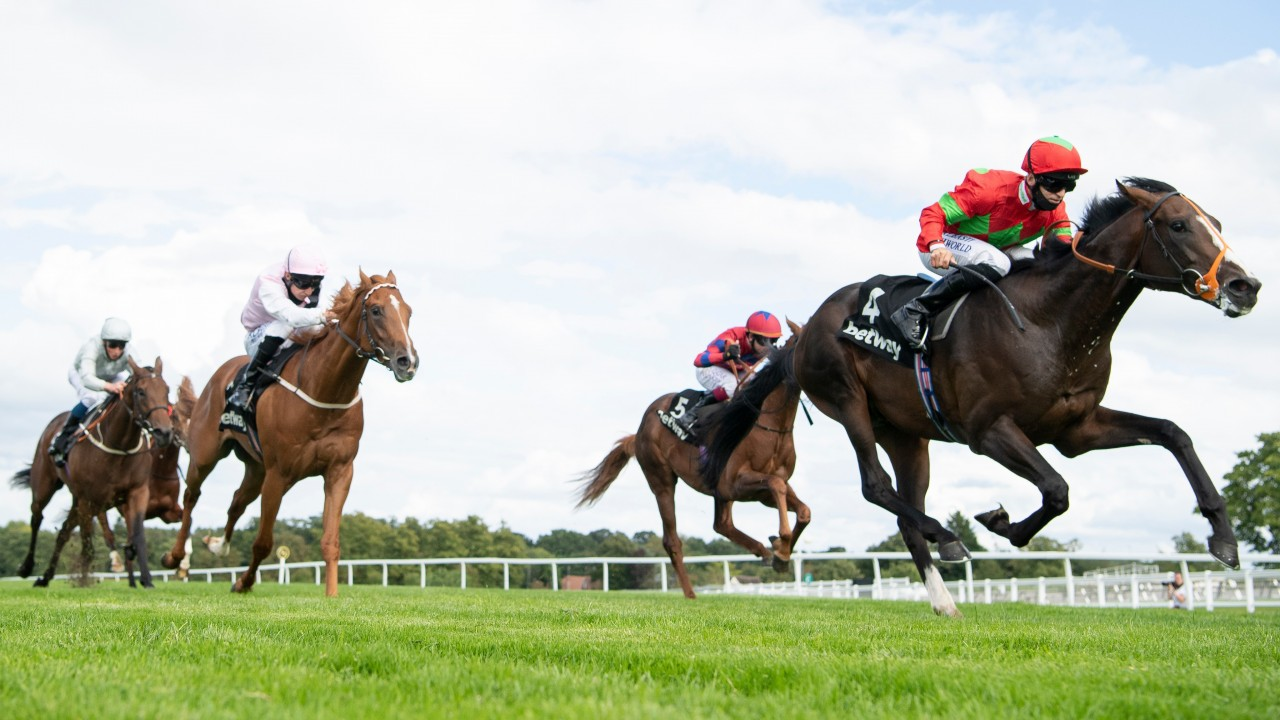 Solario stakes betting advice betting odds booker prize
