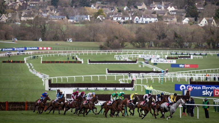 The Cheltenham Festival is jump racing's Olympics and takes place every March