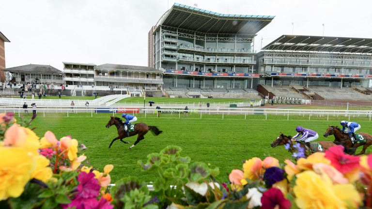 There were no spectators at York to see the world's highest-rated horse Ghaiyyath dominate his rivals in the Juddmonte International in August