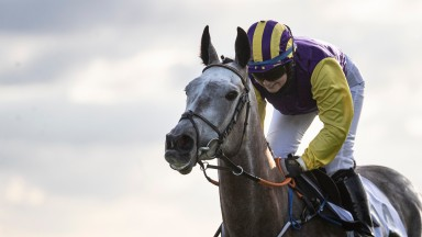 Princess Zoe: bids to enhance her reputation in the Oyster Stakes at Galway