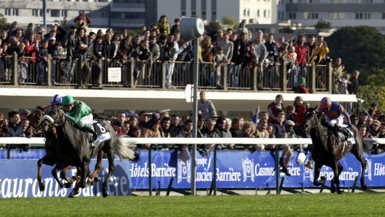 But for the brilliance of Dalakhani, six-year-old Mubtaker (far side, striped cap) would have been a wide-margin winner of the 2003 Prix de l'Arc de Triomphe