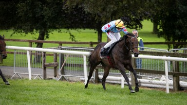 A Step Too Far goes up a total of 16lb for her two wins at Bellewstown