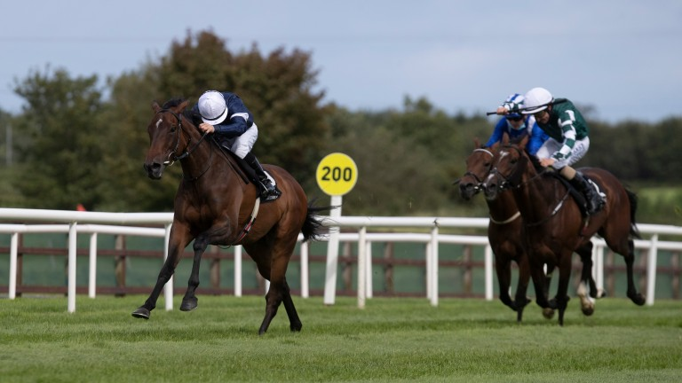 Master Of Reality: bids for back-to-back wins in Her Majesty's Plate