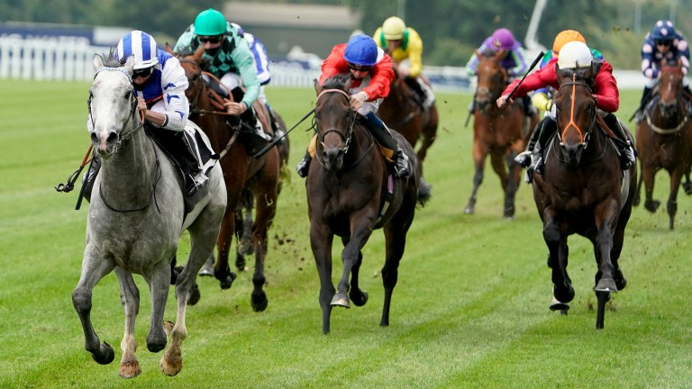 Dark Shift leads them home on his debut at Ascot last year