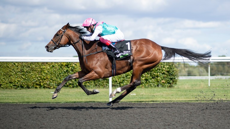 Enable: won the September Stakes at Kempton on Saturday under Frankie Dettori