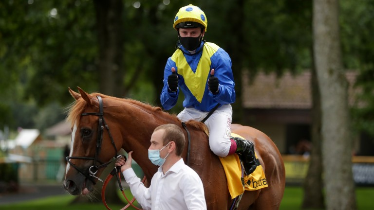 Dream Of Dreams: winner of the Sprint Cup at Haydock this year