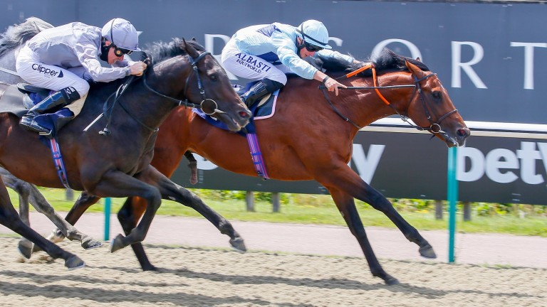Starman, pictured winning on debut at Lingfield in July, is unbeaten in three starts