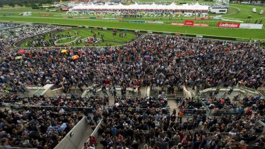 A huge crowd gathers as the runners for the Portland Handicap circle the parade ring at Doncaster in 2016