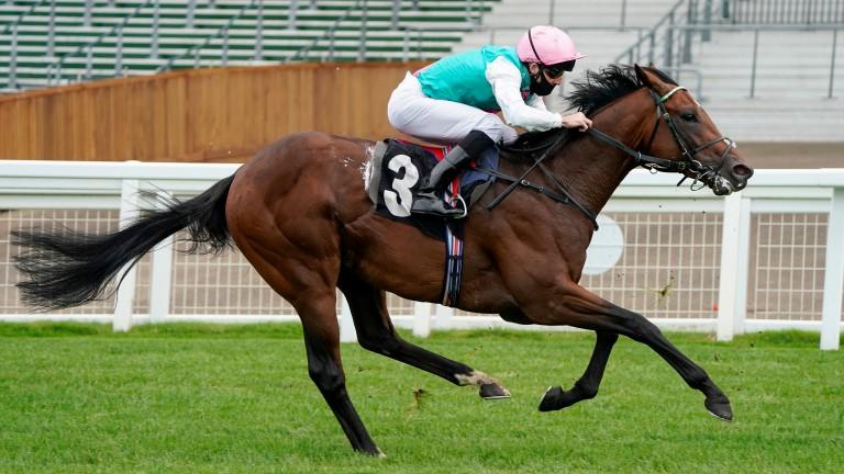 Derab has been drawn wide in stall 14 for Sunday's Qatar Prix du Jockey Club
