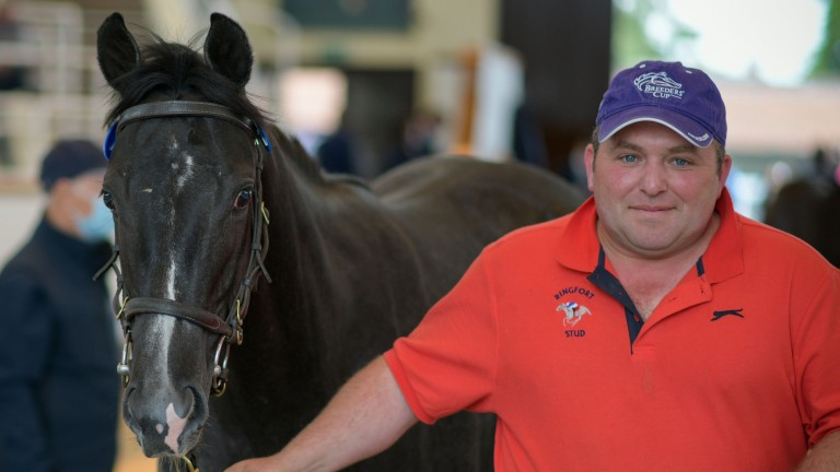 Lot 143: Nick Bell signed for Miss Amulet's half-sister at 45,000gns