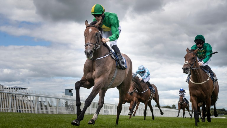 Miss Amulet: Group 2-winning filly was sold privately