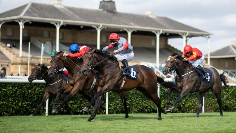 Ubettabelieveit (6) wins the Flying Childers Stakes under Rowan Scott