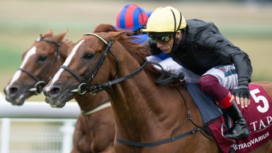Stradivarius: warms up for the Arc by tackling four rivals in the Group 2 Prix Foy