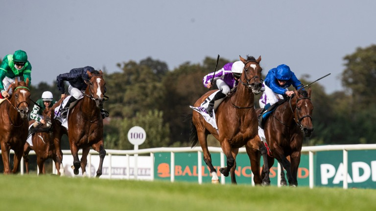 Magical (white cap) battles past Ghaiyyath to win at Leopardstown