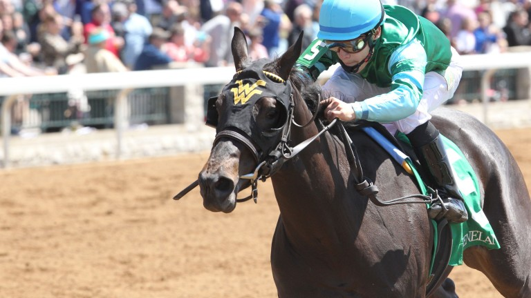 Con Te Partiro strikes on her debut at Keeneland in April 2016 and has not looked back