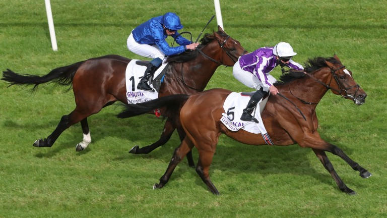 Magical (Seamie Heffernan) gets the better of Ghaiyyath (William Buick) in the Irish Champion Stakes at Leopardstown