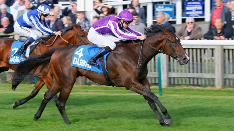 Sergei Prokofiev storms to success in the Cornwallis Stakes at Newmarket