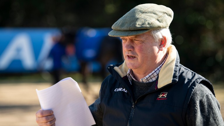 Colin Tizzard: says he couldn't be happier with Native River