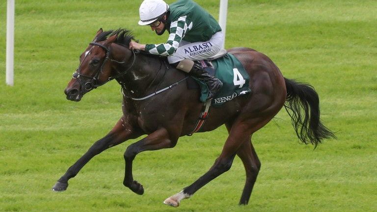 """Lucky Vega: """"There's been interest from a couple of farms to stand him."""""""