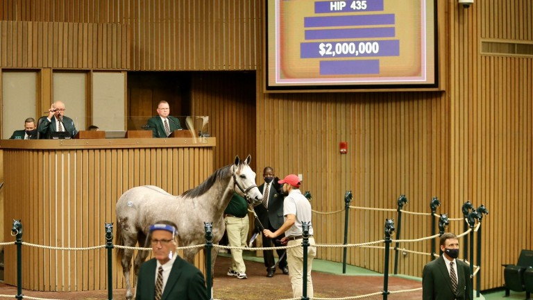The Tapit colt out of Grade 1 winner Tara's Tango who topped Book 1 at Keeneland