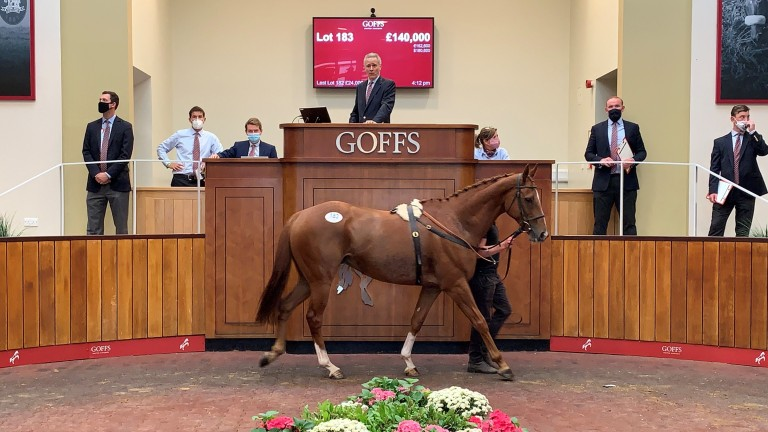Top lot Stoney Mountain is knocked down to Tom Malone for £140,000