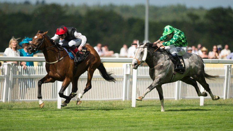 Partnering Free Eagle to victory against the The Grey Gatsby in the Prince of Wales's Stakes at Royal Ascot in 2015