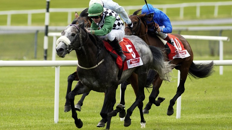 Winning the 2004 Irish Derby on Grey Swallow