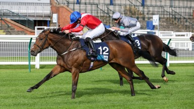 EXCEPTIONAL (Paul Hanagan getting his 100 winner at the track) wins at AYR 18/9/20Photograph by Grossick Racing Photography 0771 046 1723
