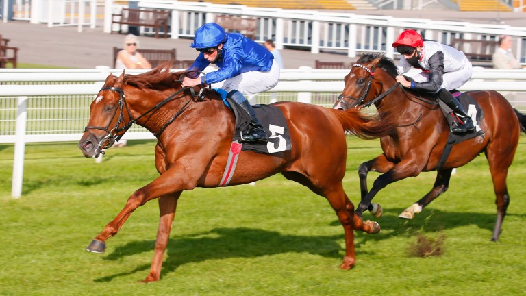 Megallan (red cap): supported for the Vertem Futurity Trophy