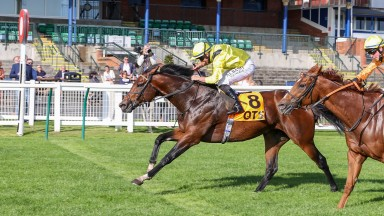 NAHAARR (Tom Marquand) wins the QTS AYR GOLD CUP at AYR 19/9/20Photograph by Grossick Racing Photography 0771 046 1723