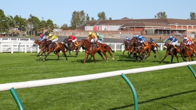 Bielsa (blue and white, starred cap) was not beaten far in the Ayr Gold Cup