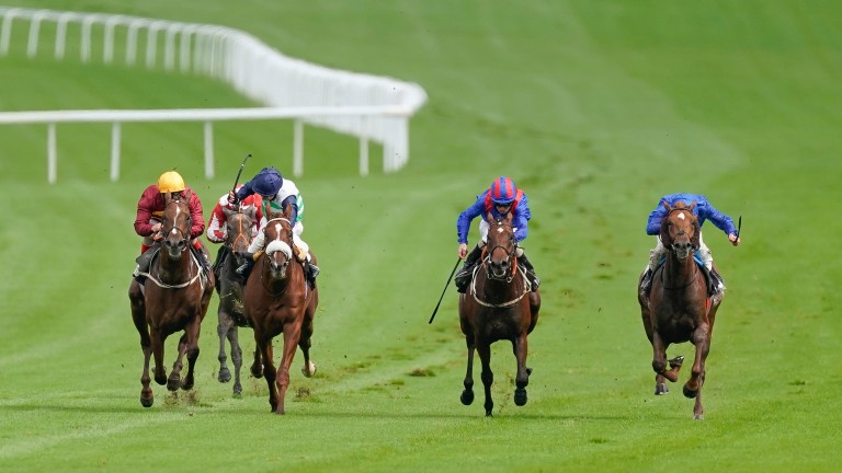 Act Of Wisdom (blue silks, right) picks up gamely under James Doyle